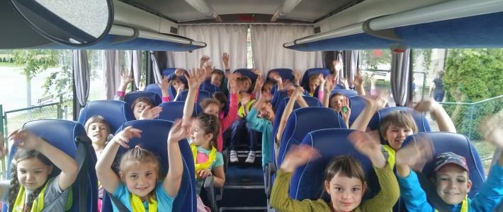Dnevi dejavnosti v DOMU ČEBELICA